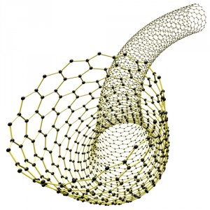 Carbon Nanotubes and lung injury