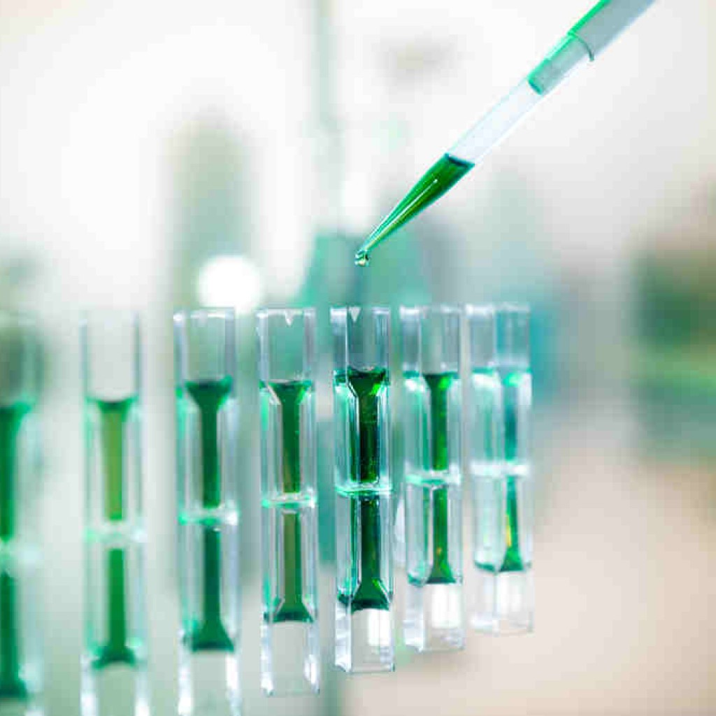 Lung Stem Cell Spheroids Could Offer Cheap, Rapid Pulmonary Fibrosis Therapy