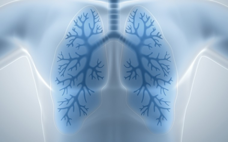 Inhaled treatments for pulmonary fibrosis