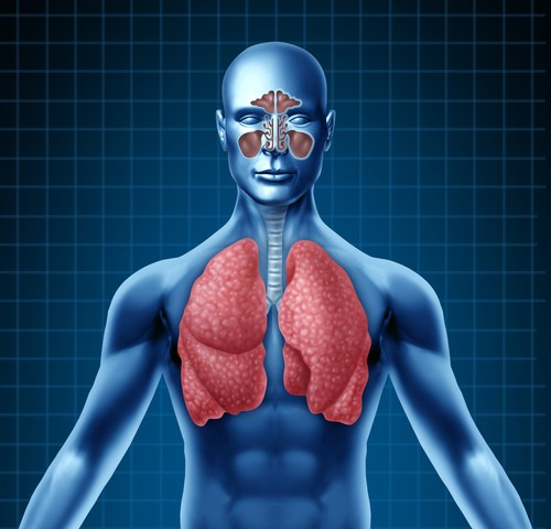 Surgery Effectiveness for Lung Cancer Patients with IPF Explored in New Study
