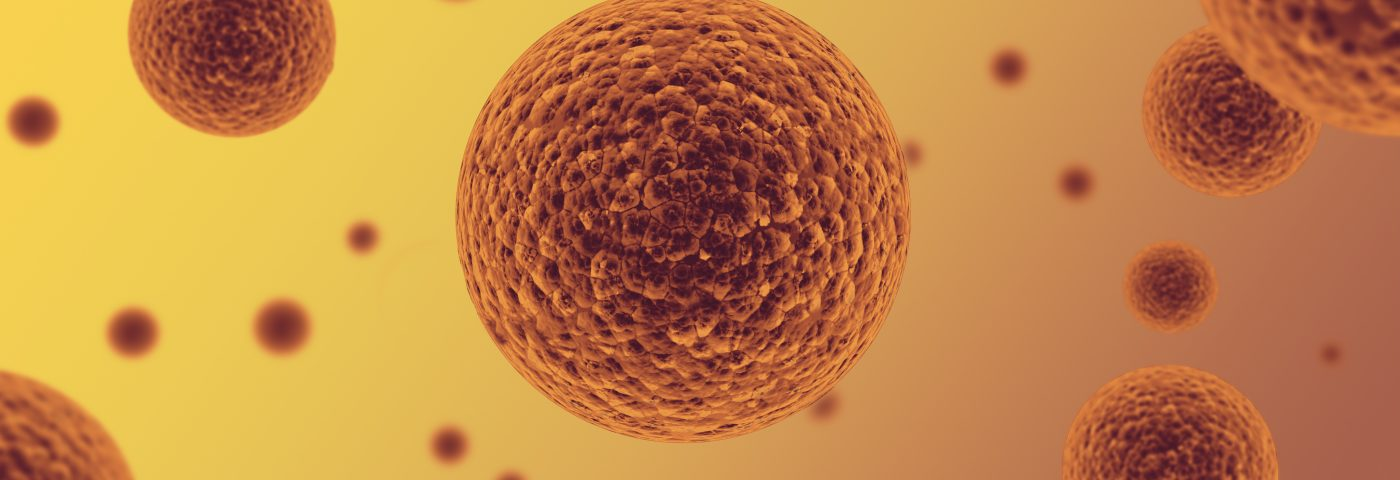 Pro-Fibrotic Factor in Mesenchymal Stem Cells Seen to Trigger Anti-Fibrotic Response