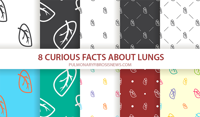 8 facts about lungs