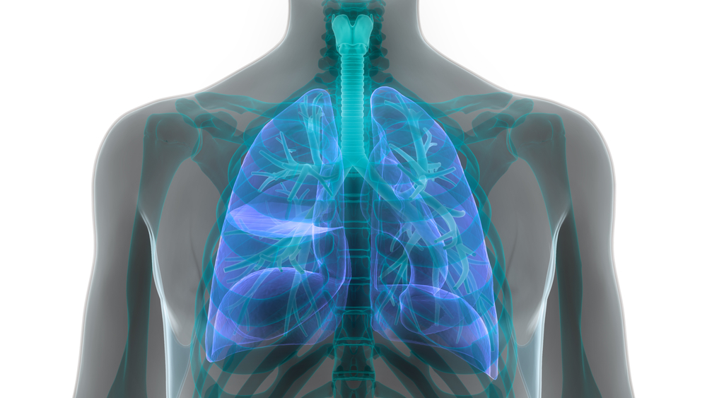 IVA337 in lung fibrosis