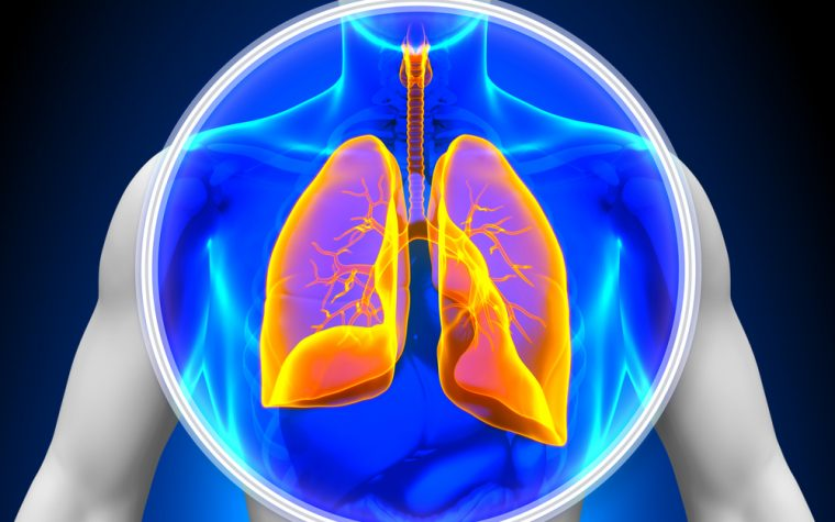 Lung transplant study