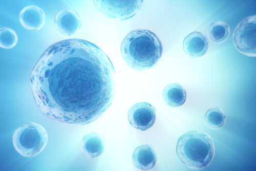 High Monocyte Levels Linked to Poorer Outcomes in IPF, Other Fibrotic Diseases, Study Finds