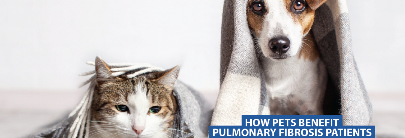 How Pets Benefit Pulmonary Fibrosis Patients