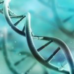 telomeres and DNA damage