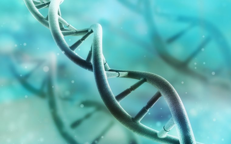 Small Group of Genes in Lung Fibroblasts May Help Promote IPF, Study Suggests