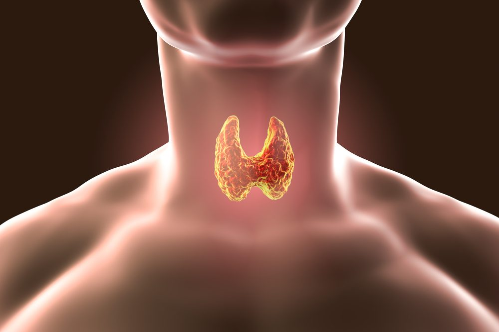 Inhaled Thyroid Hormone May Work to Reverse Lung Fibrosis in IPF