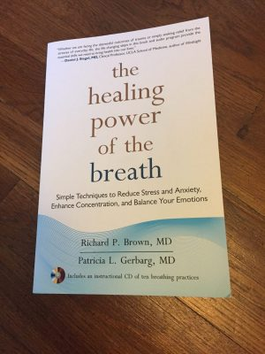 The Healing Power of Breath by Richard P. Brown and Patricia L. Gerbarg