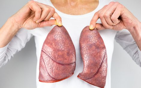 Collaborators Explore New Ways to Assess Lungs' Viability for Transplant