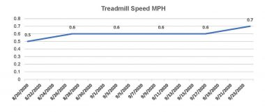 recovery \ Pulmonary Fibrosis News \ A simple chart shows Kevin's treadmill speed each day during the first 45 days of his post-transplant recover.